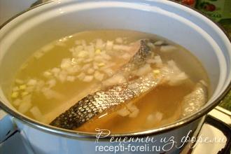 Суп на курином бульоне 150 вкусных рецептов с фото  Алимеро